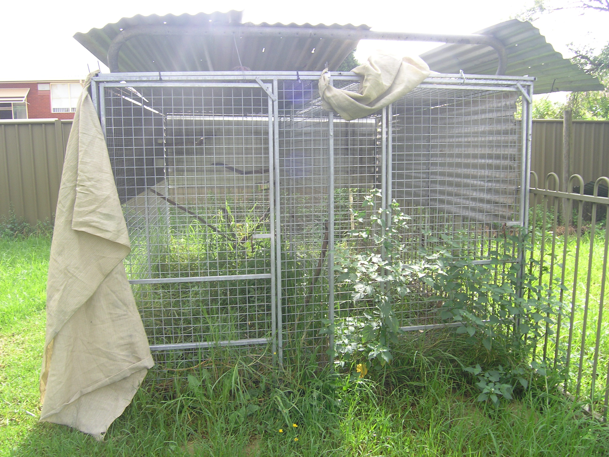 double dog runs for sale a bargain price big dog rescue With dog runs for sale